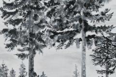Sort hvid Natur